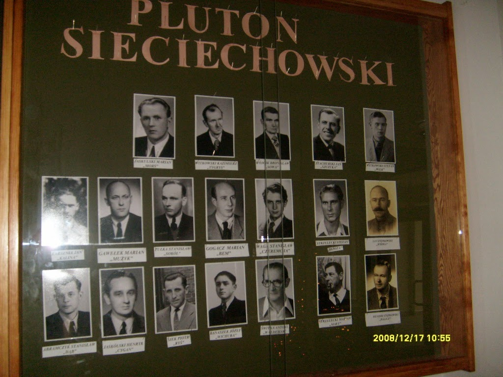 PLUTON SIECIECHOWSKI